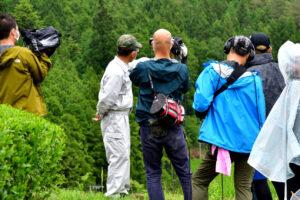 鱒渕茶園がテレビで紹介されました